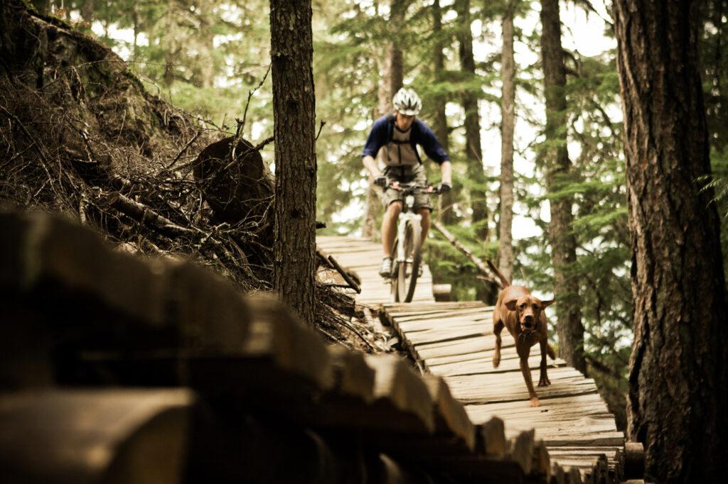 Man mountain biking with dog in Whistler, BC
