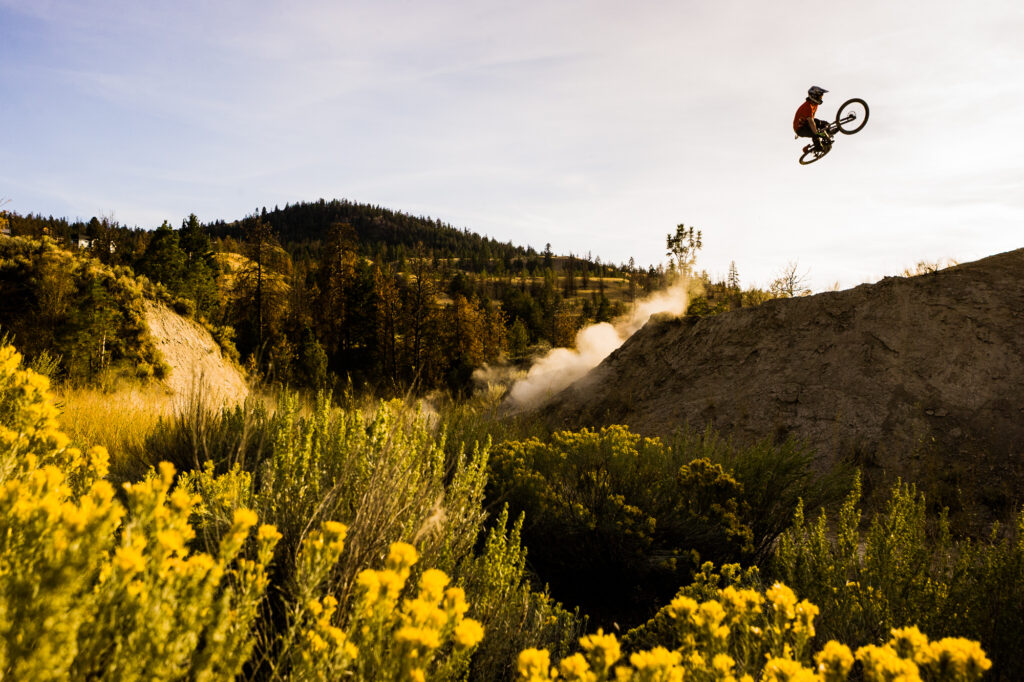 Man jumping mountain bike with flowers in the foreground, Kamloops, BC