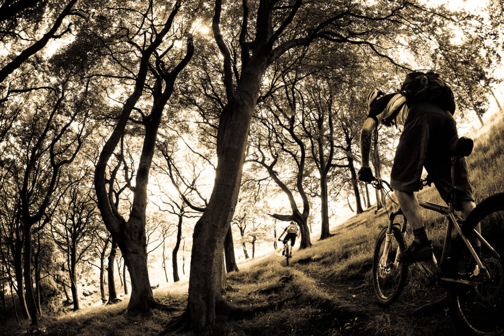 Two mountain bikers ride singletrack under old trees, Todmorden, UK