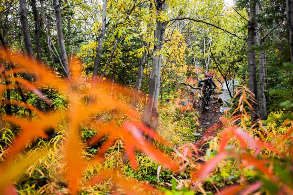 Sylvain Turcotte, Carcross, Yukon